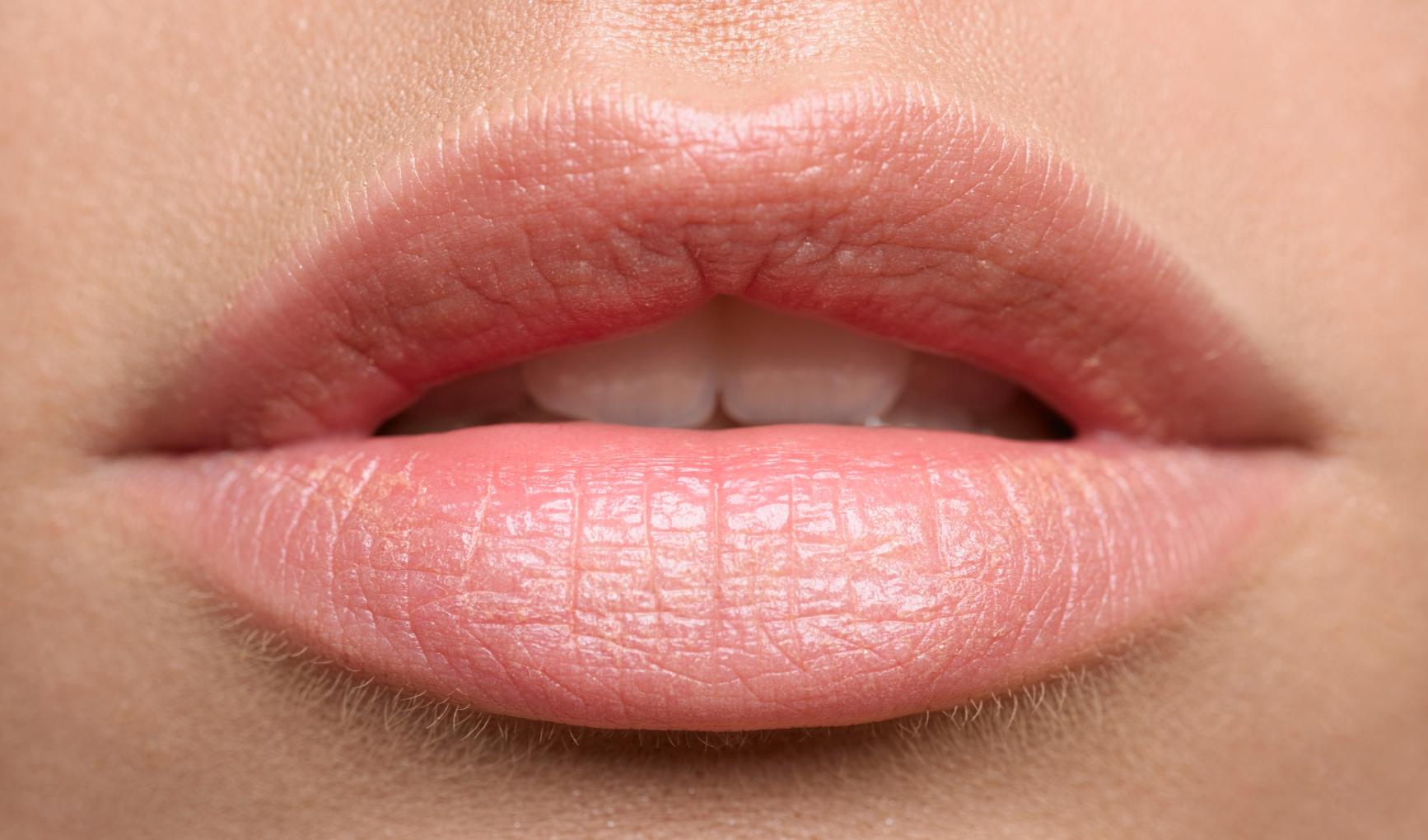 bibir lembab