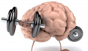 meningkatkan kekuatan otak