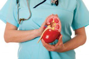 pengobatan penyakit ginjal