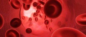 fungsi darah