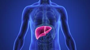 penyebab penyakit liver