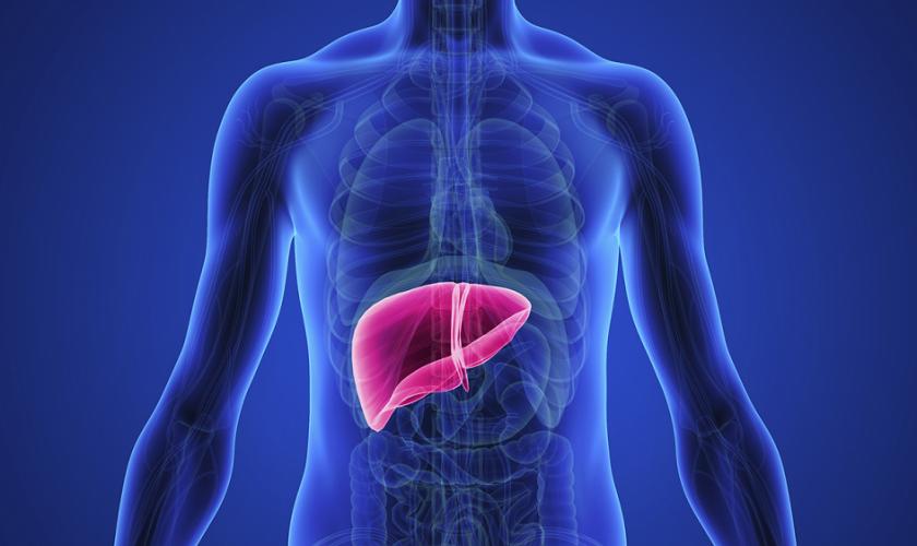 penyakit_liver